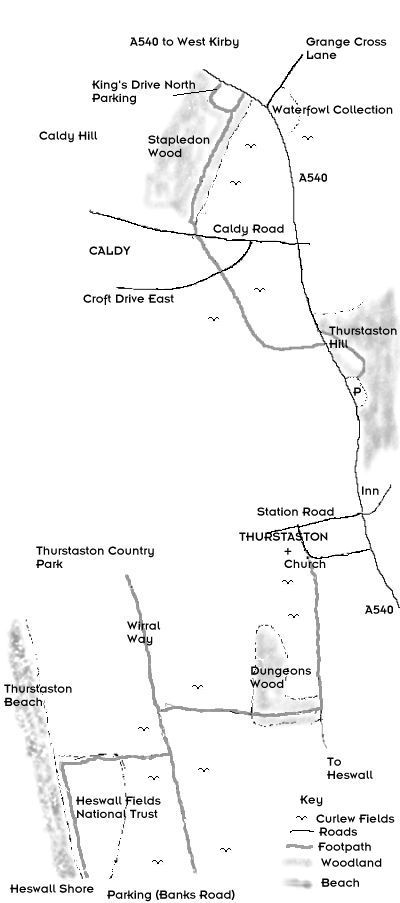 Curlew walk map
